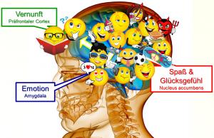 Einblick ins Gehirn2